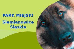 Owczarek Niemiecki w Parku Górnik Siemianowice Śląskie