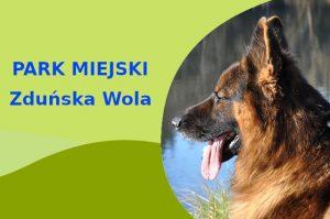 Owczarek Niemiecki w Parku im. Stefana Złotnickiego Zduńska Wola