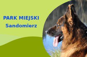 Owczarek Niemiecki w Parku Piszczele Sandomierz