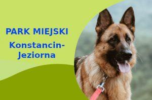 Owczarek Niemiecki w Parku Zdrojowym im. hrabiego Witolda Skórzewskiego Konstancin-Jeziorna